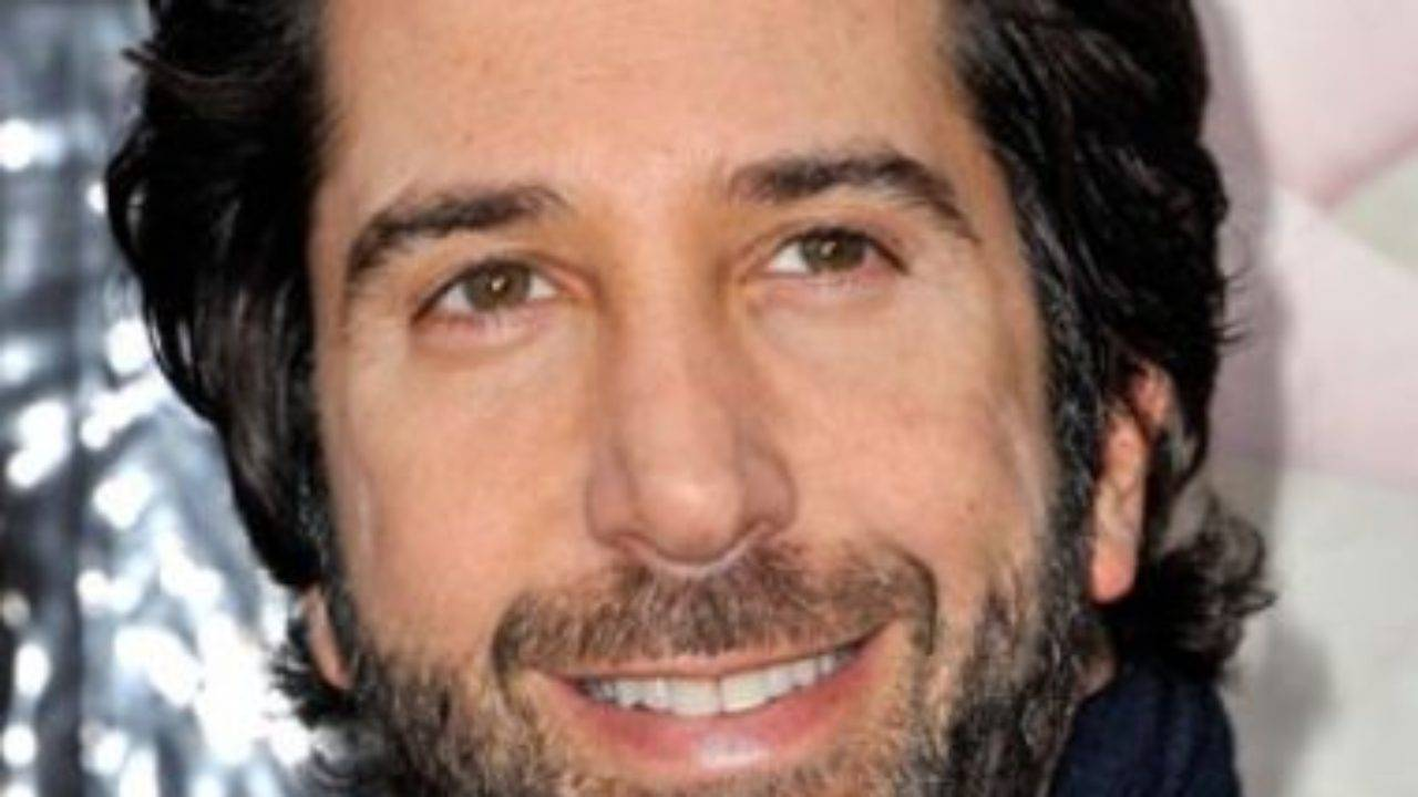 David Schwimmer Height, Weight, Age, Biography, Wiki, Wife, Family - David Schwimmer