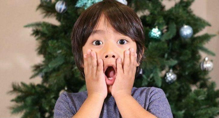 Ryan ToysReview Height, Bio, Wiki, Age, Family, Net Worth, Facts - Ryan ToysReview