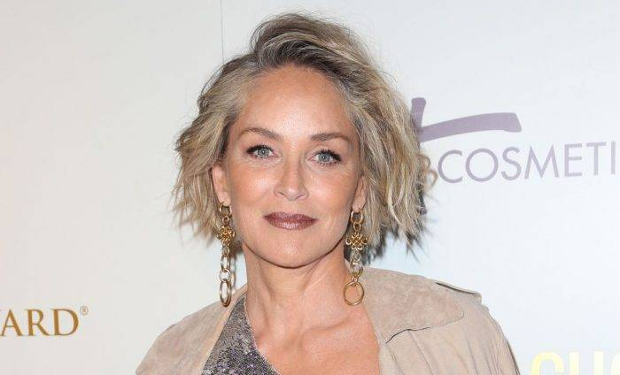 Sharon Stone Lifestyle, Wiki, Net Worth, Income, Salary, House, Cars, Favorites, Affairs, Awards, Family, Facts & Biography - Sharon Stone Lifestyle Wiki Net Worth Income Salary House Cars