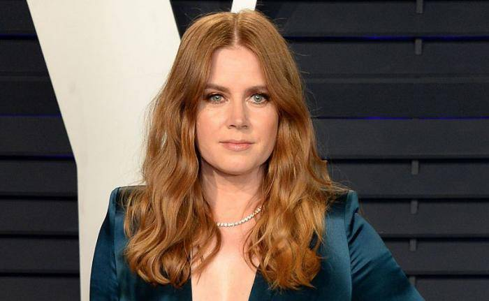 Amy Adams Lifestyle, Wiki, Net Worth, Income, Salary, House, Cars, Favorites, Affairs, Awards, Family, Facts & Biography - Amy Adams Lifestyle Wiki Net Worth Income Salary House Cars