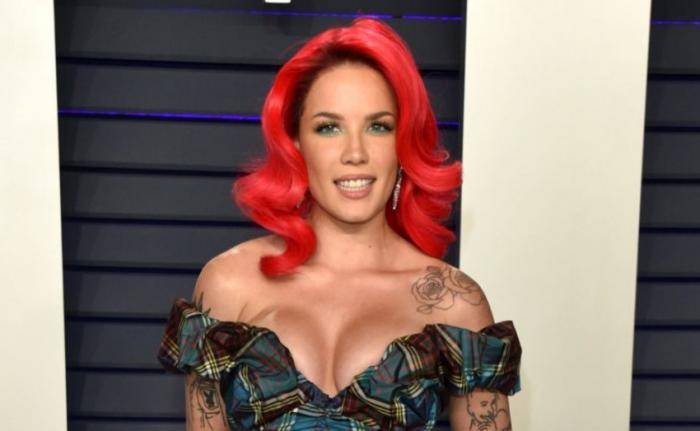 Halsey Lifestyle, Wiki, Net Worth, Income, Salary, House, Cars, Favorites, Affairs, Awards, Family, Facts & Biography - Halsey Lifestyle Wiki Net Worth Income Salary House Cars Favorites