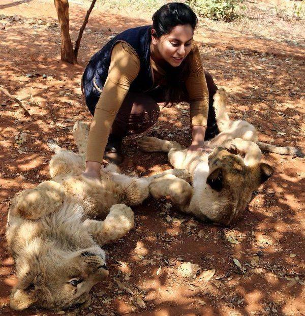 Upasana Kamineni plays with lions