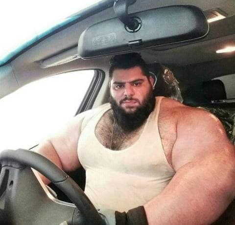 Sajad Gharibi (Bodybuilder) Wiki, Age, Wife, Family, Biography - Sajad Gharibi Bodybuilder Wiki Age Wife Family Biography amp More