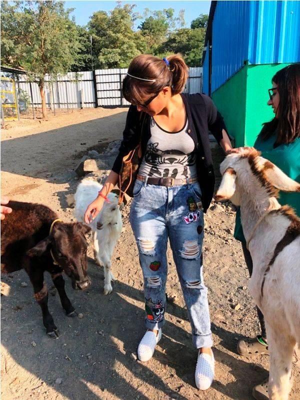 Monicka Vadera Poonawalla in the service of animal rights