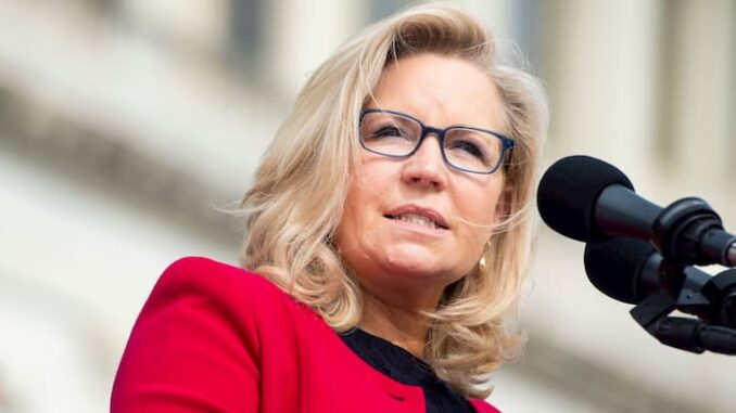 Liz Cheney Bio, Age, Husband, Children, Wyoming, Net Worth, Twitter - Liz Cheney Bio Age Husband Children Wyoming Net Worth Twitter